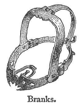 Scold's Bridle - Torture Mask